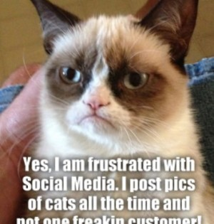 "Grumpy cat says ""I am frustrated with social media..."""
