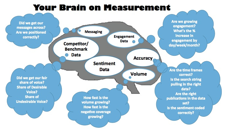 diagram of brain with measurement areas